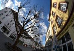 Saarbrücken (187)