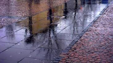 Saarbrücken (348)