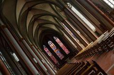 Münster (36)