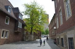 Münster (37)