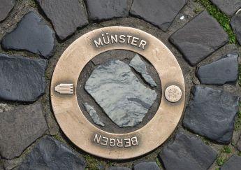Münster (50)