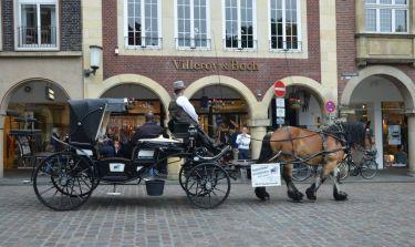 Münster (6)