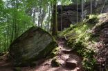 Altschlossfelsen im Pfälzerwald (1)
