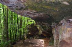 Altschlossfelsen im Pfälzerwald (12)