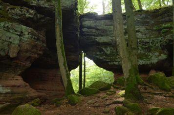 Altschlossfelsen im Pfälzerwald (21)