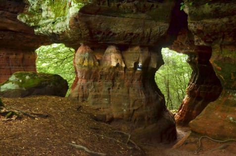 Altschlossfelsen im Pfälzerwald (22)