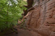 Altschlossfelsen im Pfälzerwald (6)