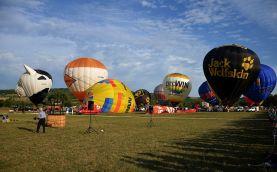 Ballonfestival Reinheim (15)