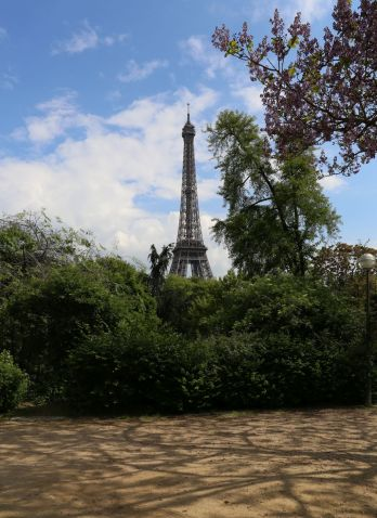 Paris (22)